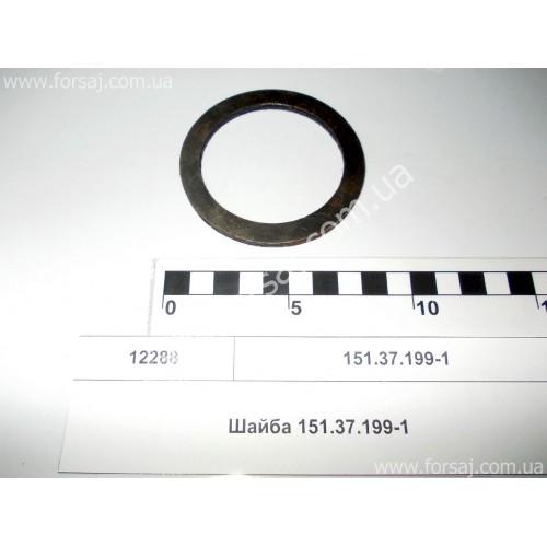 Шайба 151.37.199-1