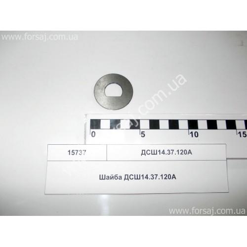 Шайба ДСШ14.37.120А