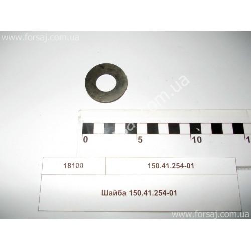 Шайба 150.41.254-01