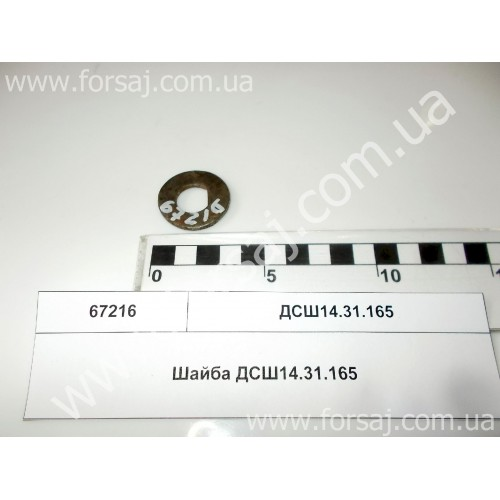 Шайба ДСШ14.31.165